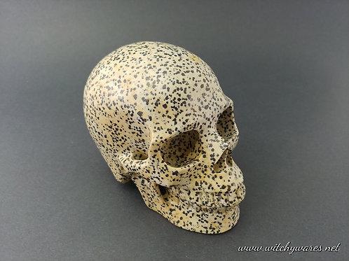 Dalmation Stone Skull