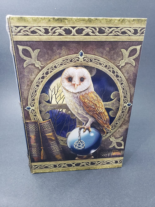 Owl Book Box
