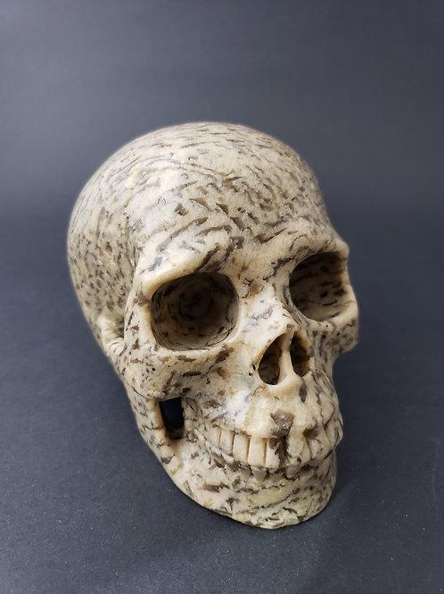Zebradorite Skull