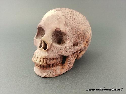 Chinese Painting Stone Skull