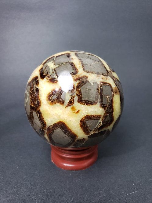 Dragon Septarian Sphere