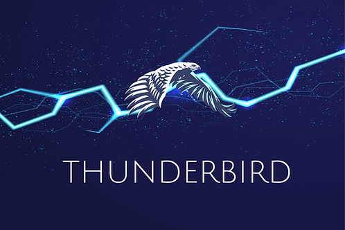 Thunderbird - Warm Vanilla - Amber - Petrichor (Rain)