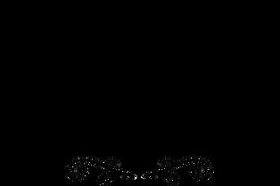 SBS_Logo_Typeset.png