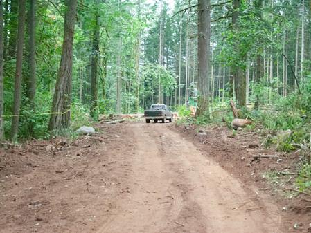 Logging update: Lots
