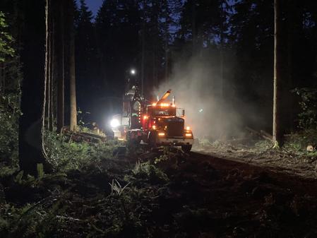 Lot 1: Logging Wednesday 7/21