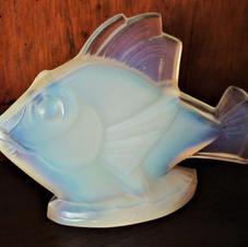 "Sabino Fish ""Poisson Chabot"""