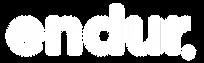 Logos_PUP14.png