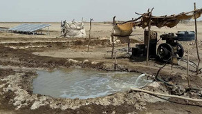 Toxic gas detection for salt farmer