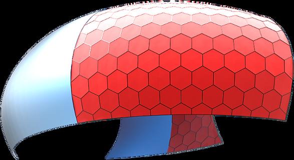 Rhino_evolute3d.png