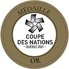 Coupe_Nations_2021.png