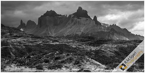 Ref.11061 - Torres Del Paine National Park (Chile)