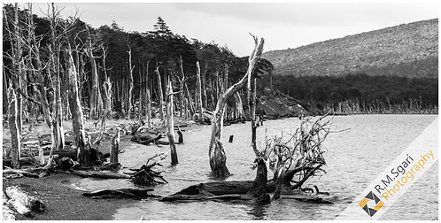 Ref.11017 - Laguna Esmeralda (Argentina)