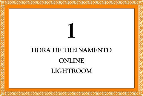 1 Hora de Treinamento de Lightroom (Online)