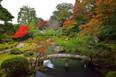 智積院庭園.jpg