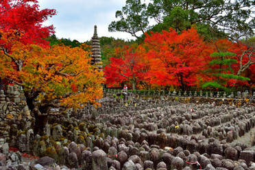 化野念仏寺の秋.jpg