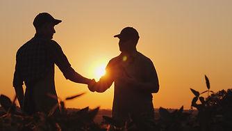 Two-farmers-talk-on-the-field,-then-shak