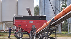 Loading lentils in containers