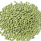 Dry-green-peas--on-a-white-background-96
