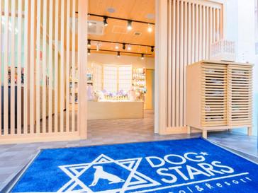 横浜の犬の複合施設ドッグスターズ.jpg