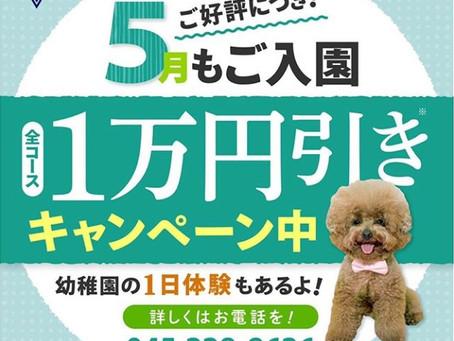 5月も引き続き1万円引きキャンペーン実施中!