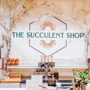 The Succulent Shop