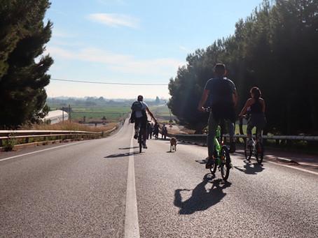 Viladecans buida de cotxes el Camí del Mar cada diumenge pels esportistes i vianants