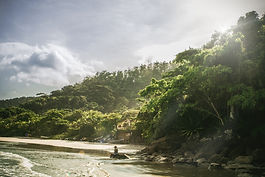 Tropical%20Beach_edited.jpg