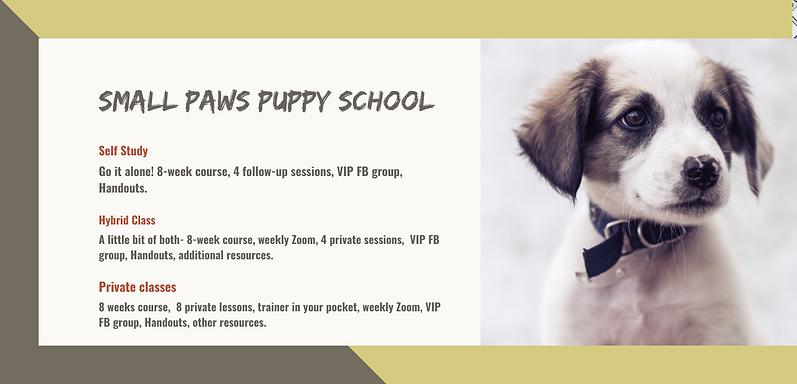 Puppy Pre School.png
