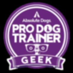 Logo-PDT-Geek-01.png
