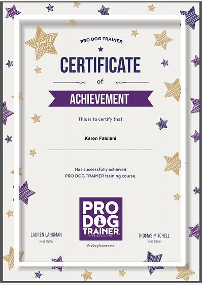 certificate  2018 crop.png