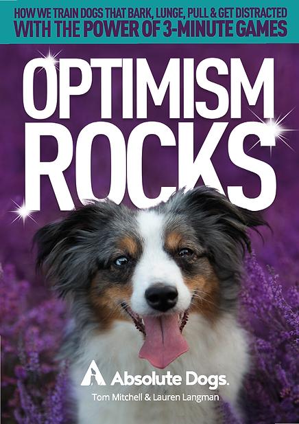 OptimismROCKS Title.png