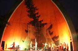 Terya Circus