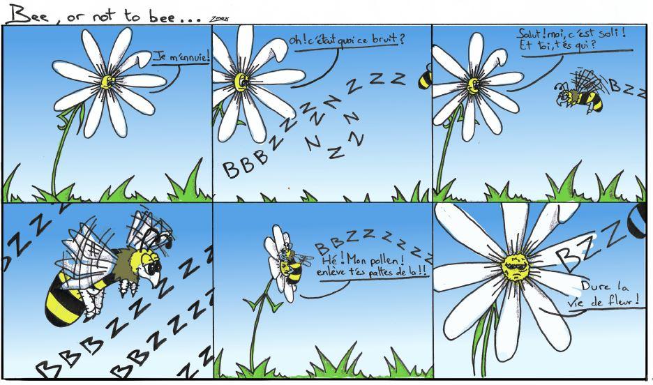 Soli Flore, bande dessinée.
