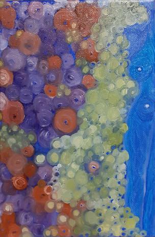 « Burbujas de la noche »