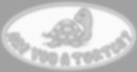 snapping turtles logo gray.png