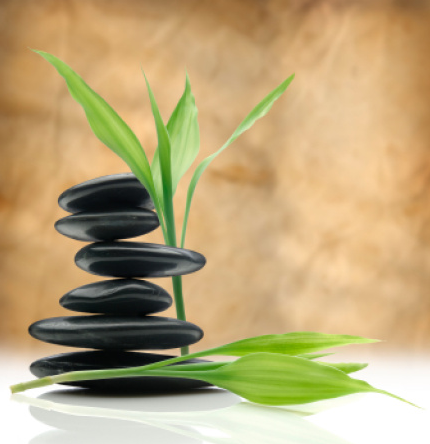 Home Massage Therapy Services