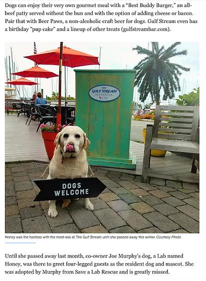 Gulf Stream Dog Friendly 2.png