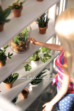 Barbie 1:6 scale plants