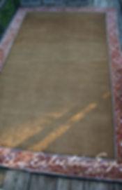 zebra rug before