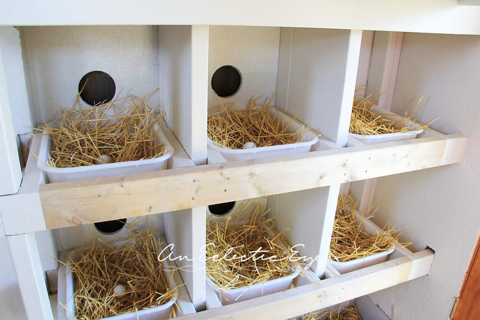 chicken coop nest boxes diy