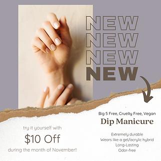 Dip Manicure Nov Promo.png