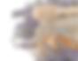 lavender honey image lighter.png