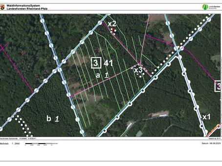 Per Satellit und Drohne: So entstehen neue Waldkarten auf der Montabaurer Höhe