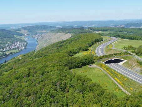 Bildaufnahme von Grünbrücken
