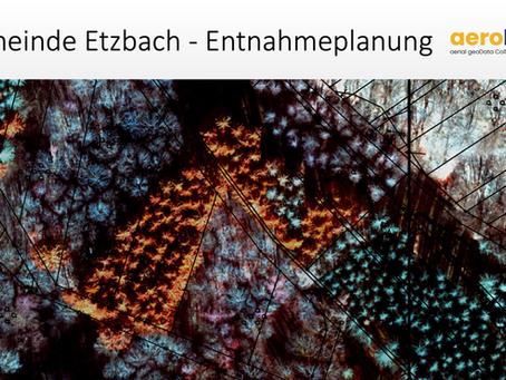 Automatisierte Erfassung des Waldstatus in Etzbach
