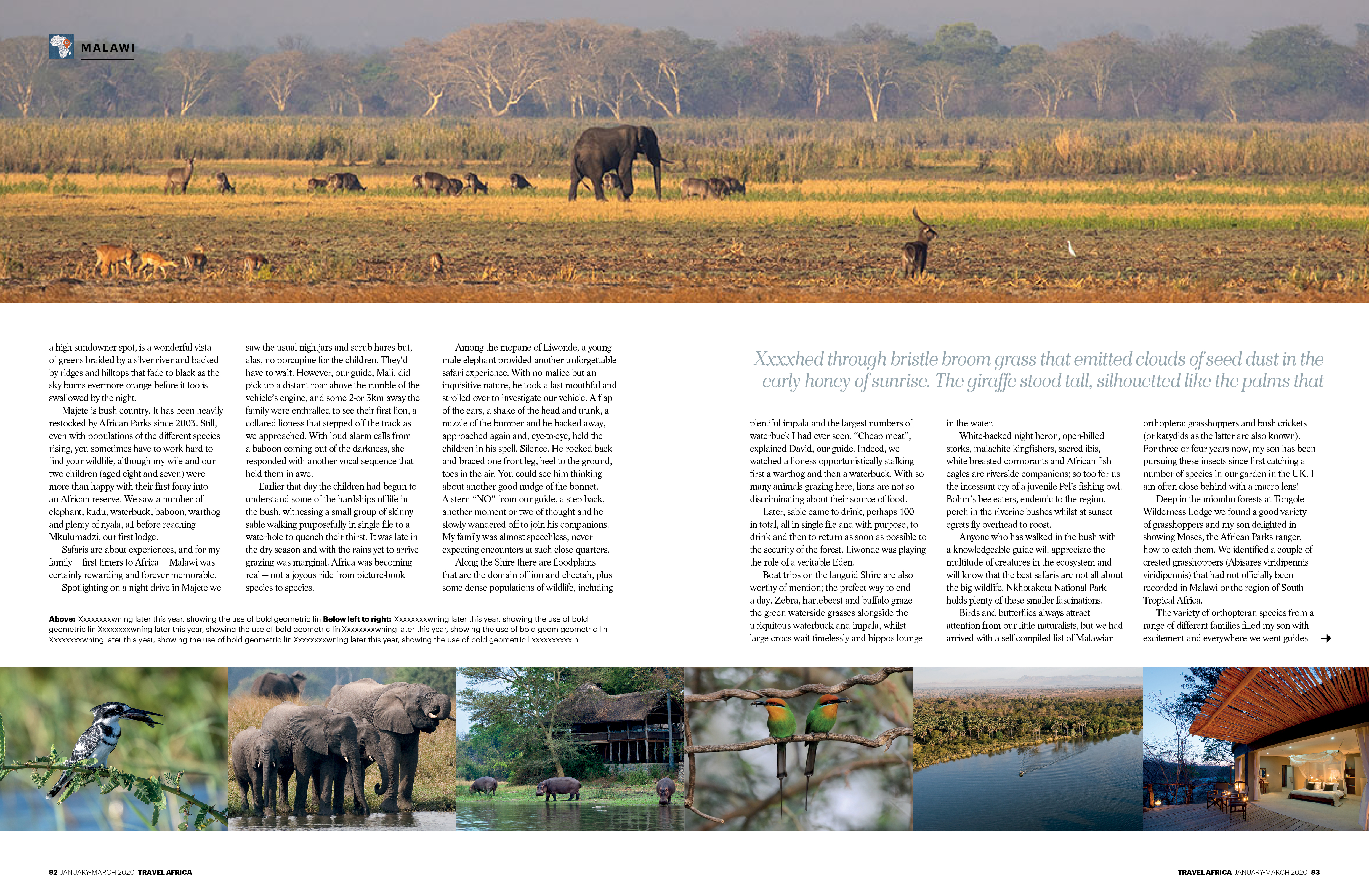 TRAVEL AFRICA: FEATURE