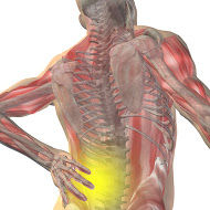 POT-Neuromuscular-disorders-course.jpg