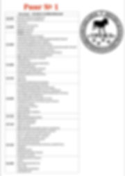 расписание рингов11.jpg