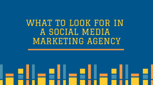 What to Look for in a Social Media Marketing Agency