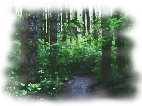 Nature Trail B